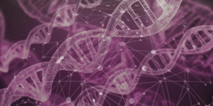 Darstellung von DNA-Strängen